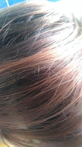 poudre meera pousse cheveux
